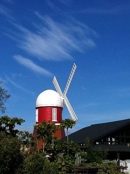 去安平吃豆花下錯站得到的異國風車景。 #tainan #anping #windmill #lost
