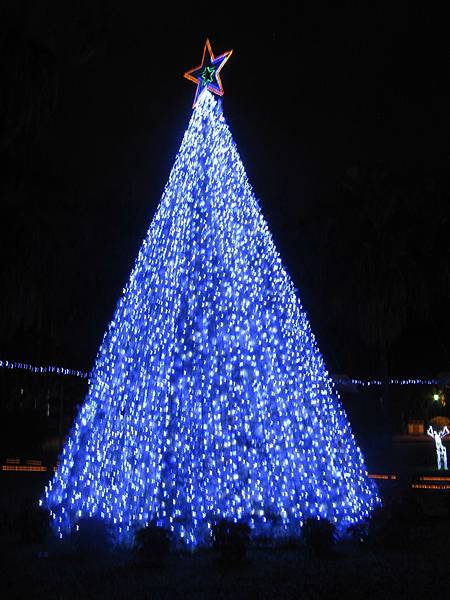 Xmas Tree #5: 輔大