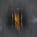 林百貨的電梯圓形採光窗(內向外)