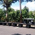 枋寮 F3 藝文特區的木製造型火車