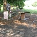 南州糖廠內已被柏油截斷的鐵軌