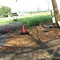 南州糖廠內已被截斷的鐵軌