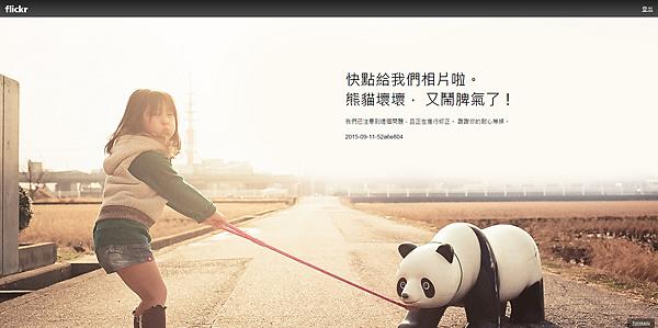 flickr panda