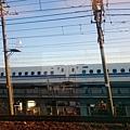 DSC_1199.JPG