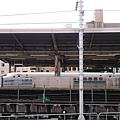 DSC_4207.JPG
