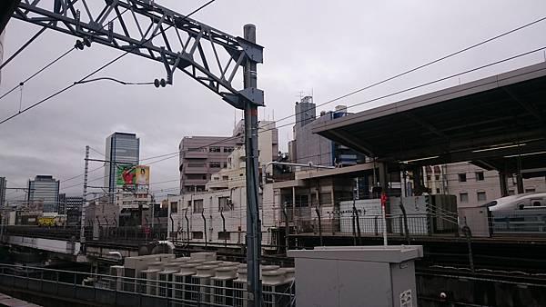 DSC_4206.JPG