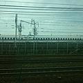 DSC_4814.JPG