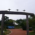 DSC_8174.JPG