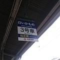 DSC_8236.JPG