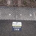 DSC_8289.JPG