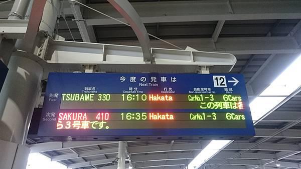 DSC_7927.JPG