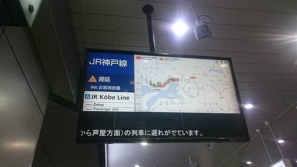 DSC_9465.JPG
