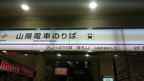 DSC_9584.JPG