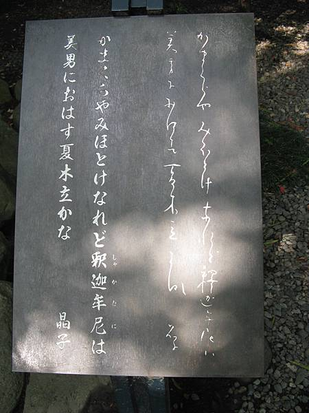 IMG_8427.JPG