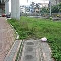 難得在同一個空間出現的三鐵:高雄捷運(上)、糖鐵(前)、台鐵(右)