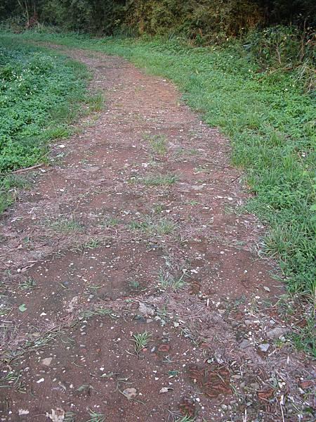 往小坪頂的石子路