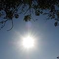 12/02的太陽