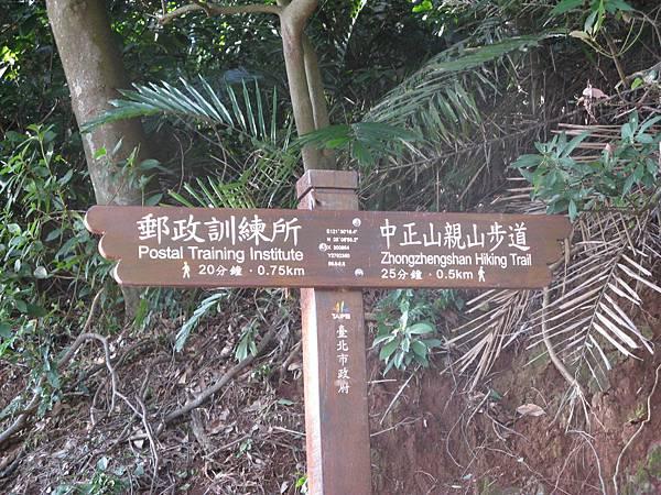 離親山步道還有500m