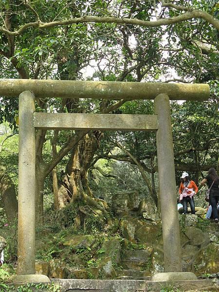 陽明山的神社遺跡-鳥居