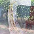 98年7月5日竹田站不明活動特製大型假車票 XD