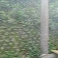 含有煤煙的風景 3