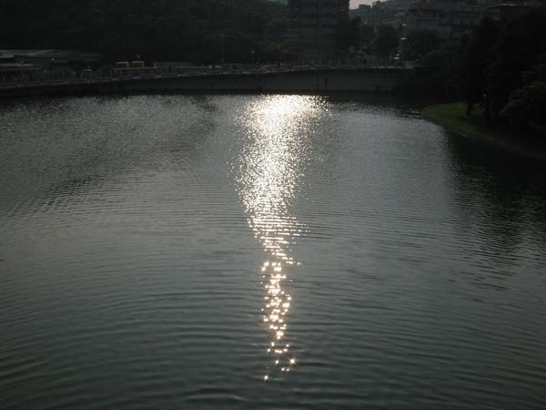 很喜歡這種陽光灑在水面的感覺