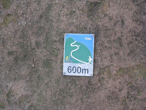 石頭上的600m