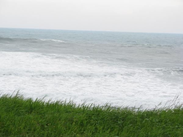 草地與海浪
