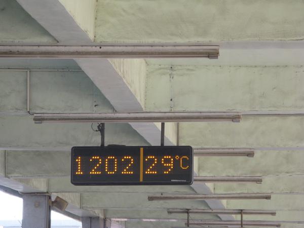 29度,還蠻熱的
