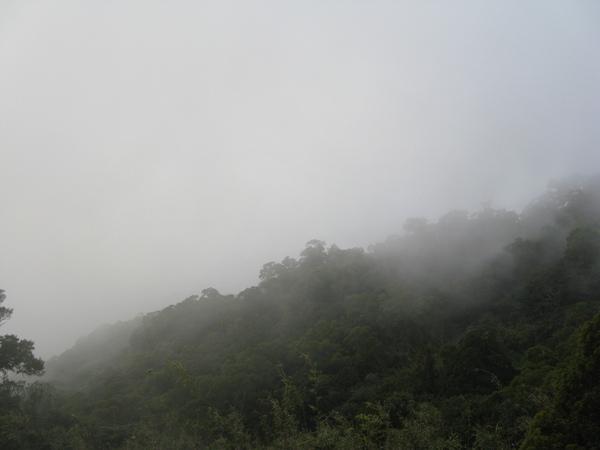大霧,什麼也看不到