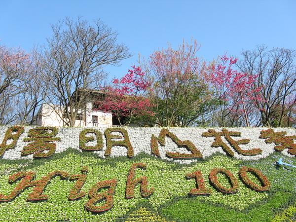 """陽明山花季 """"❤ High 100"""" 排字 1"""