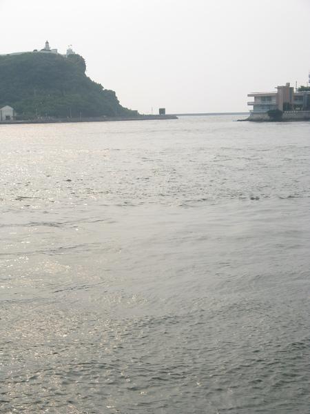 渡輪上海景 8