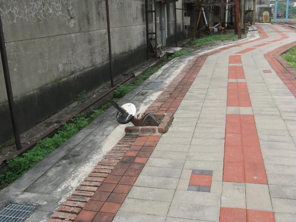 軌道已被拆除做為腳踏車道,但仍保留道岔設備…