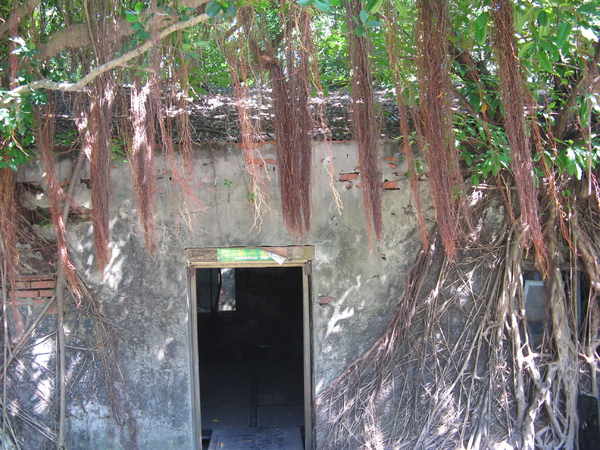 安平樹屋裡的樹 2