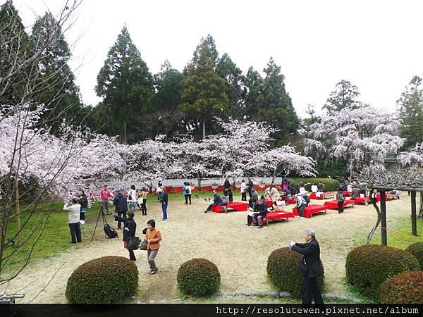 DAY2-醍醐寺057