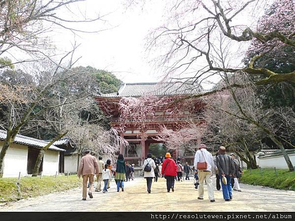 DAY2-醍醐寺062