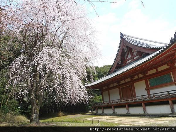 DAY2-醍醐寺076