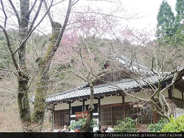 DAY2-醍醐寺087