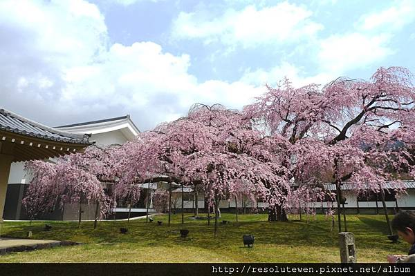 DAY2-醍醐寺102