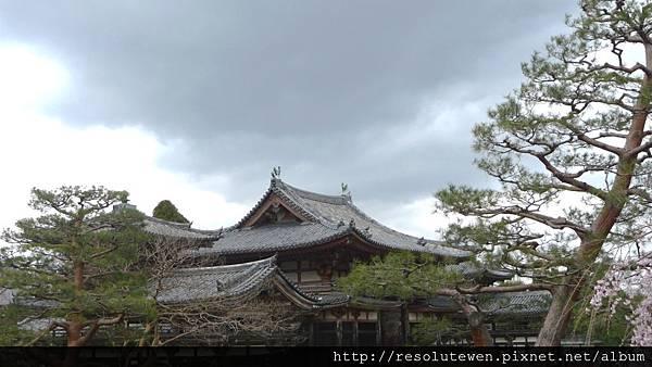 DAY3-宇治.平等院.中村藤吉100