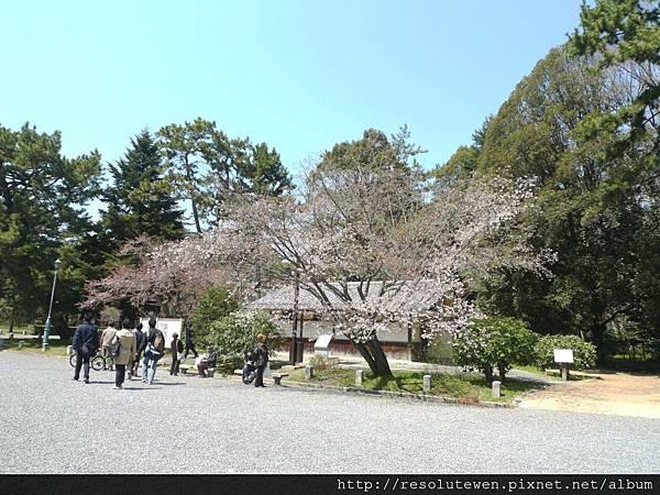 DAY5-京都御苑11