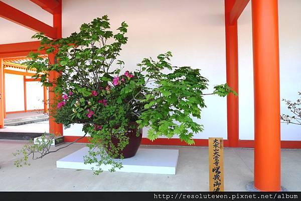 DAY5-京都御苑49