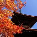 399px-Jyoujyakouji-tahoutou-20071124.jpg