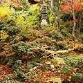 399px-Jojakkoji_Kyoto07s3s4592.jpg