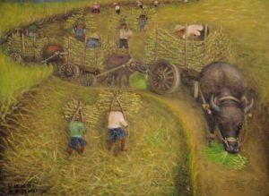 山園採糖蔗