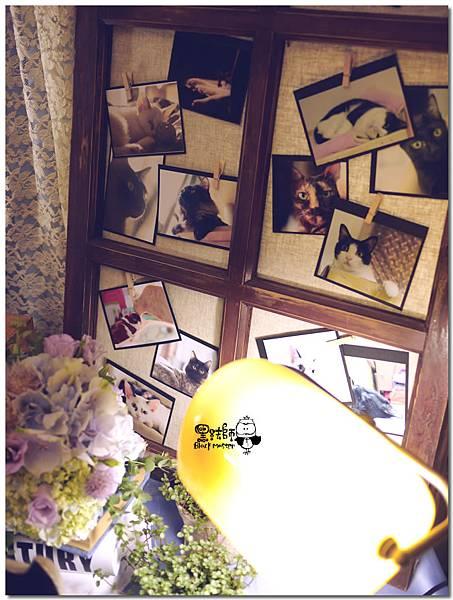 CAT X HOME婚佈 相簿桌 聖凱&蓓嘉12.jpg