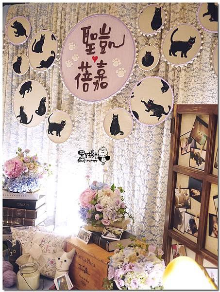 CAT X HOME婚佈 背景 聖凱&蓓嘉03.jpg
