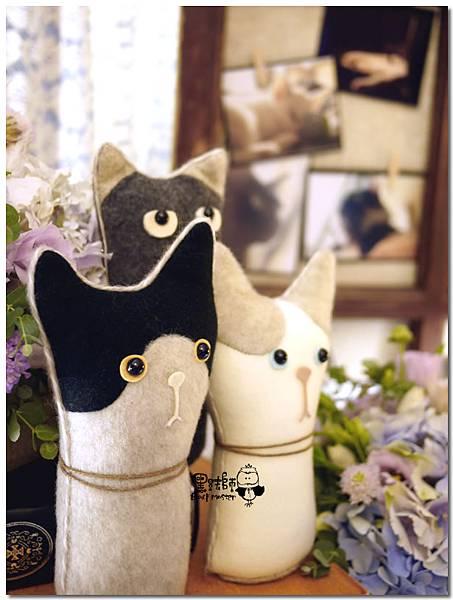 CAT X HOME婚佈 貓咪 聖凱&蓓嘉03.jpg