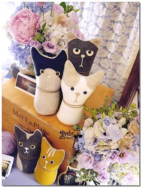 CAT X HOME婚佈 貓咪 聖凱&蓓嘉05.jpg