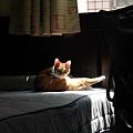媽媽~我在晒太陽